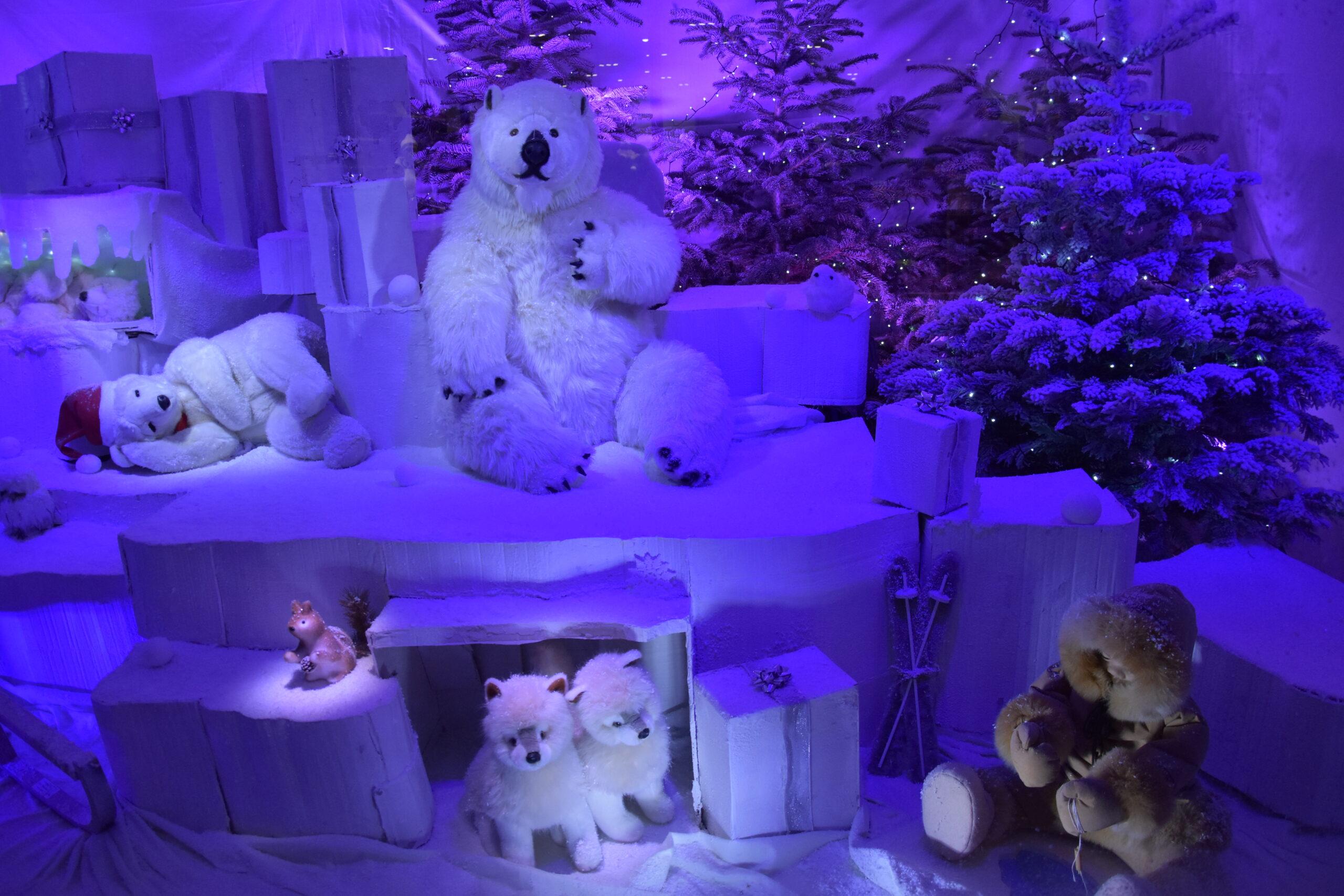Ours polaire dans la vitrine de Noël Rue Saint-Guillaume